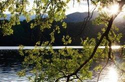 Una vacanza indimenticabile al lago di Levico