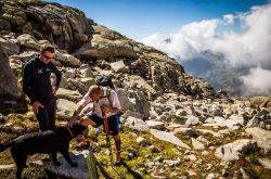 Vacanze in Trentino con il cane