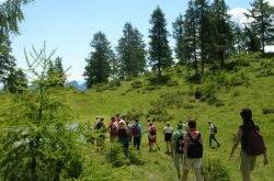 Trekking in Trentino: i passi verso la meta