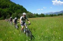 MTB in Trentino