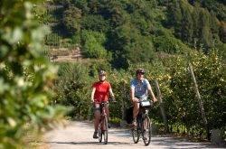 Auf dem Radweg per Bike die Valsugana erkunden