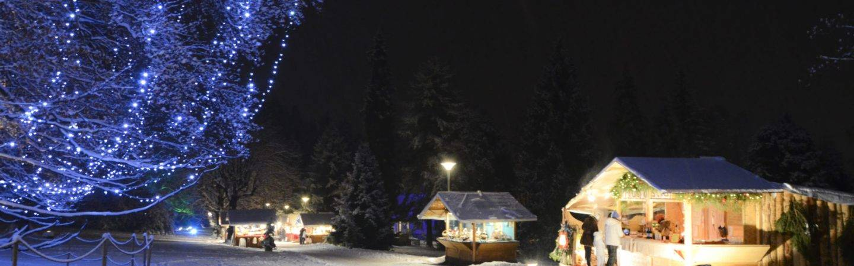 Il Mercatino di Natale di Levico Terme si svolge ogni anno nel parco secolare degli Asburgo. Immerso nella natura, troverai prodotti tipici locali del Trentino